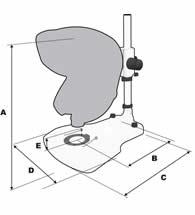 Mantis Compact Elite Bench dimensions